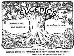 Daily July 22 Eugenics
