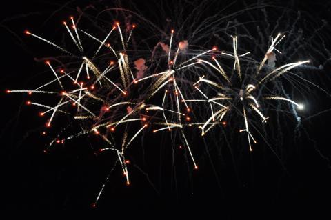 Crossette_firework_effect_at_Disney_World.JPG