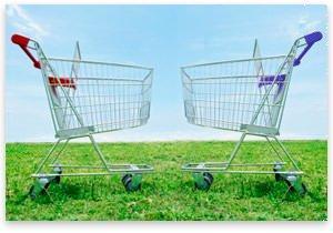 ShoppingCartElection.jpg