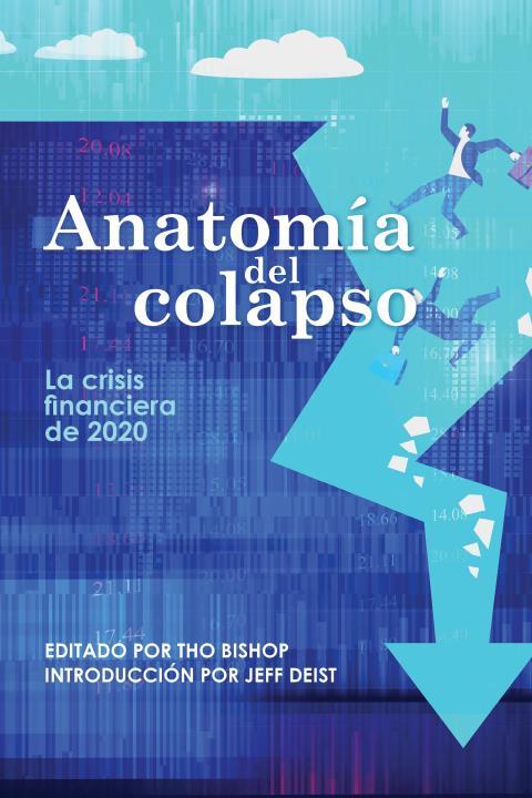 anatomy_of_the_crash-spanish