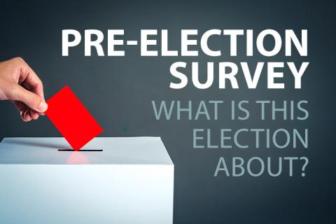 Pre-Election Survey