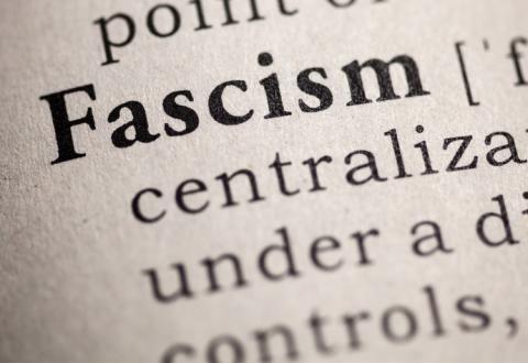 fascism mises