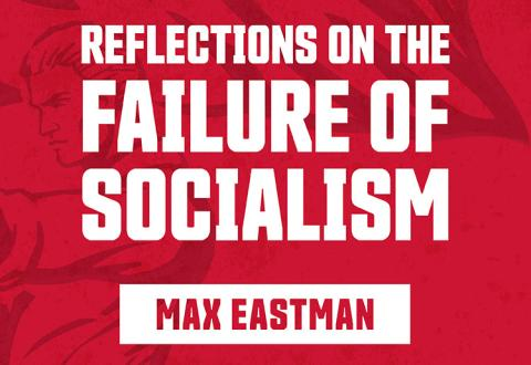 Reflections on the Failure of Socialism 750x516