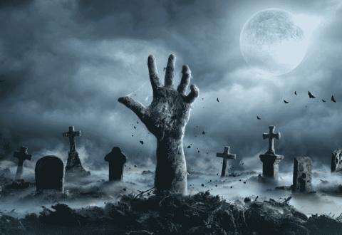 zombie stock market fed